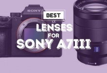 Photo of 5 Best Lenses For Sony A7iii In 2020